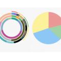 Flutter Circular Chart