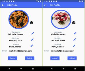 Flutter Upload Images using Firebase Storage
