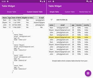 Flutter JSON Table Widget